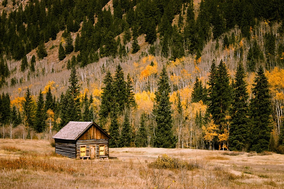 cabin-1208195_960_720