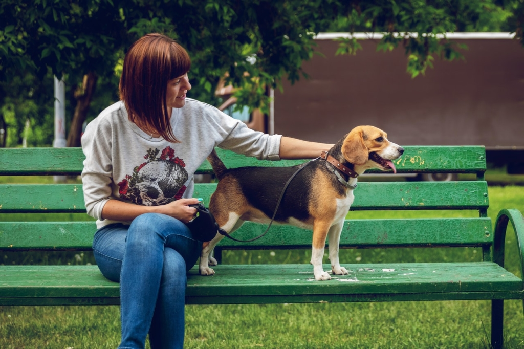 photo-of-woman-sitting-on-bench-beside-a-beagle-2534968