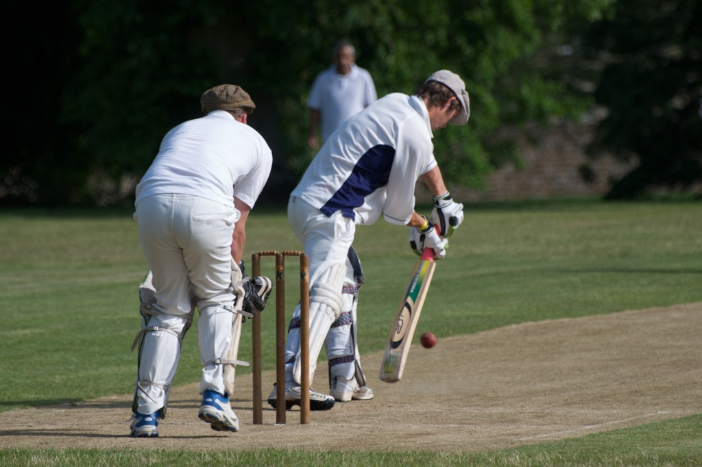 Cricket_by_David Surtees