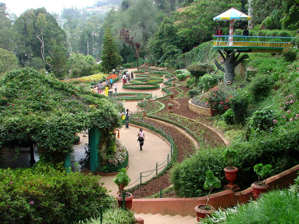 1024px-Botanical_Gardens_-_Ootacamund_(Ooty)_-_India_03